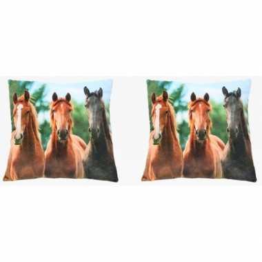 2x paardenkussens voor meisjes 35 cm