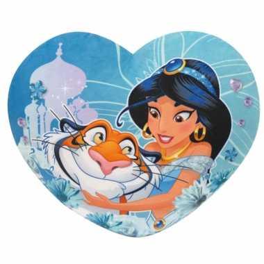 Kinder hartjes kussen Aladdin