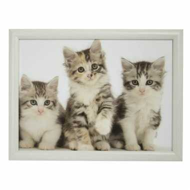 Schootkussen/laptray 3 katten/poezen kittens print 43 x 32 cm