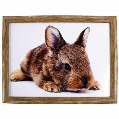 Schootkussen/laptray konijn print 43 x 33 cm