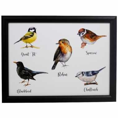 Schootkussen/laptray tuinvogels print 43 x 33 cm