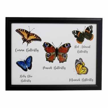 Schootkussen/laptray vlinders print 33 x 43 cm