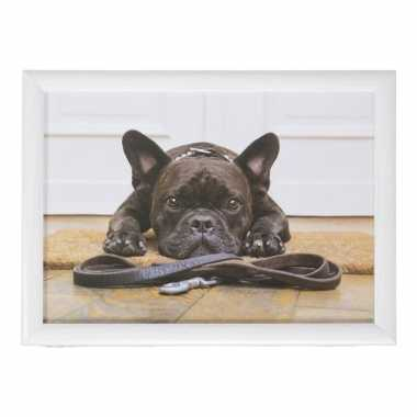 Set van 2 schootkussens/laptrays schattige franse bulldog honden print 43 x 33 cm