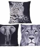 3x polyester woonkussentjes olifant leeuw luipaard print 45 x 45 cm
