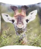 Bank kussentje giraffe woondecoratie cadeau