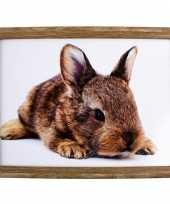 Schootkussen laptray konijn print 43 x 33 cm