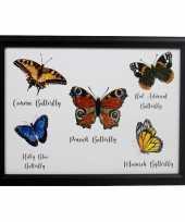 Schootkussen laptray vlinders print 33 x 43 cm